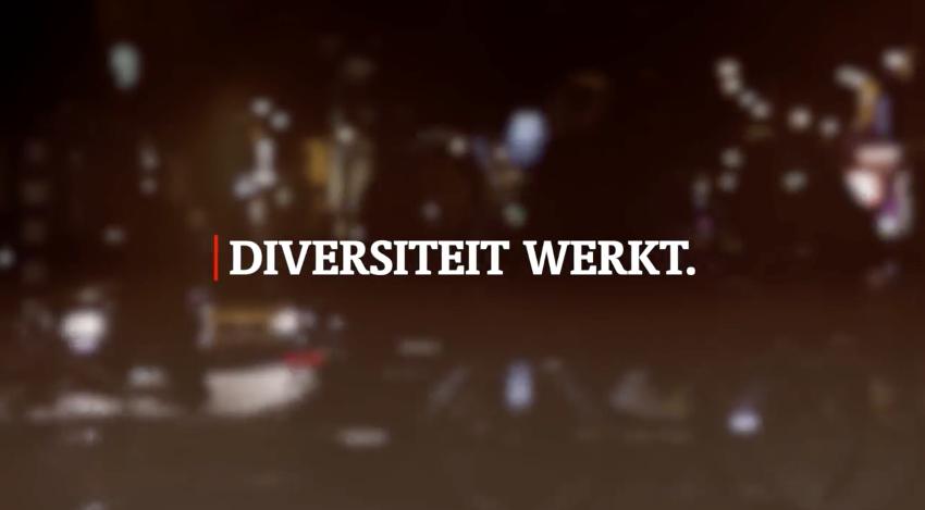 Diversiteit werkt!